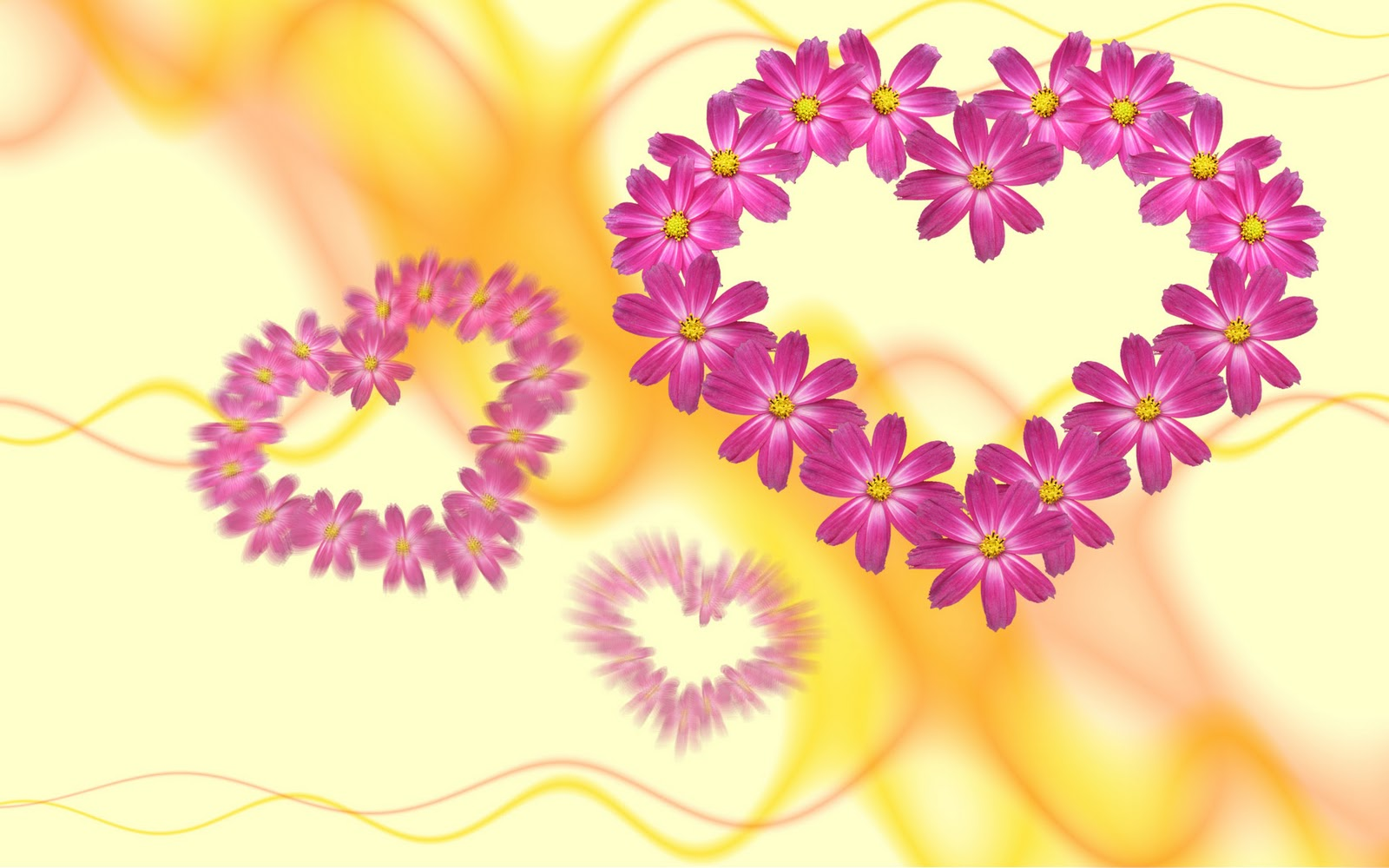 heart flower wallpaper  wallpapersafari, Beautiful flower