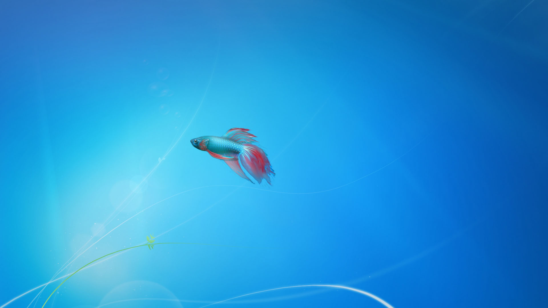 Windows 7 Fish   Wallpaper 139 1920x1080