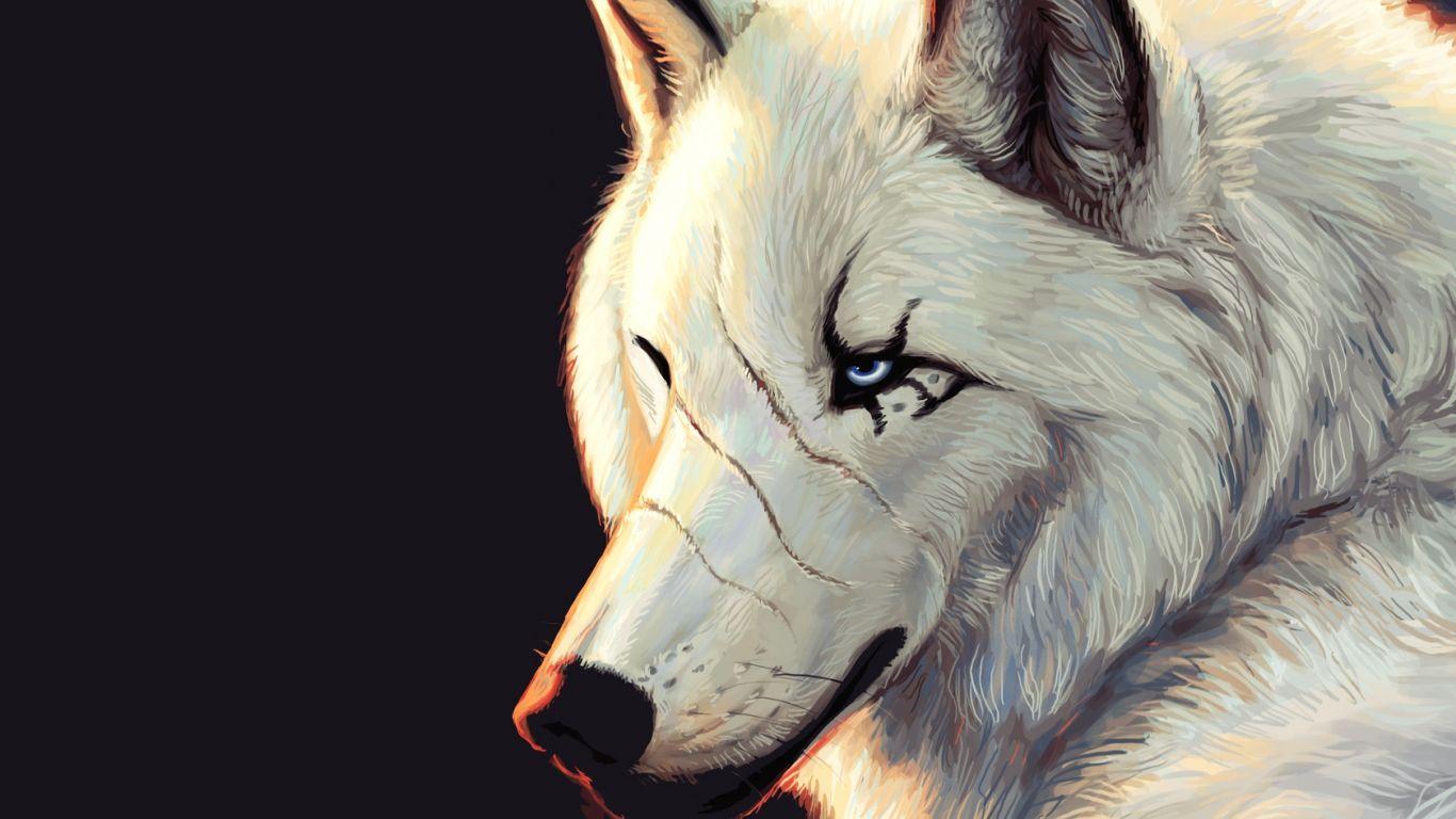 free moving wolf wallpaper Wallpapers   HD Desktop Wallpapers 1366x768