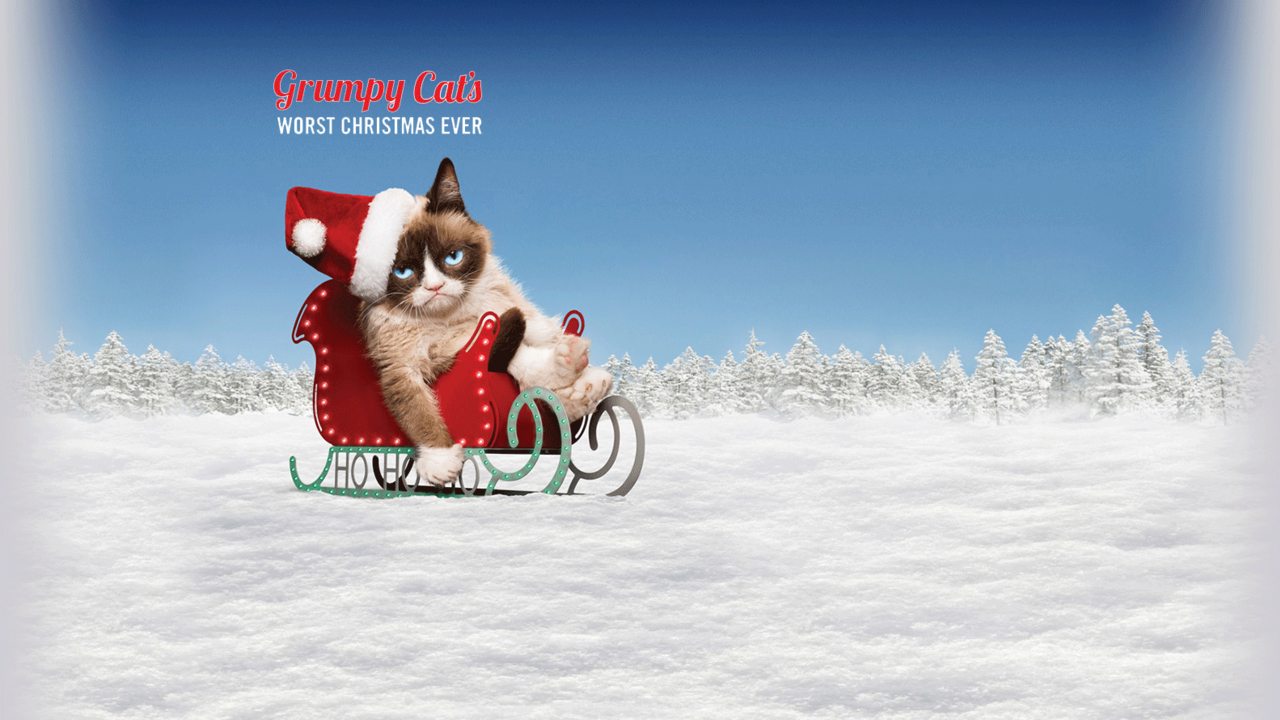 Grumpy Cats Worst Christmas Ever Lifetime 1280x720