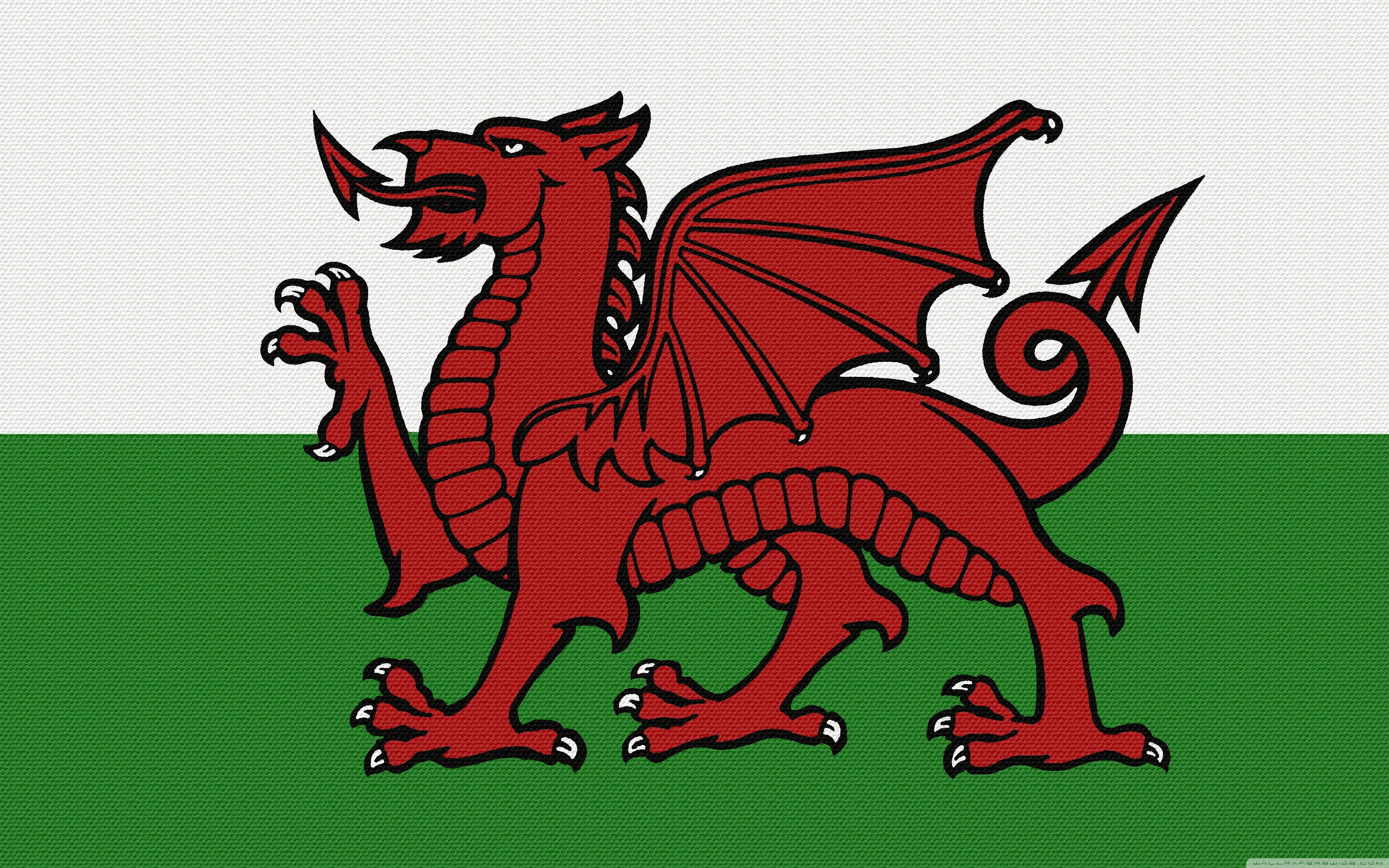 Y Ddraig Goch 4K HD Desktop Wallpaper for 4K Ultra HD TV 3840x2400