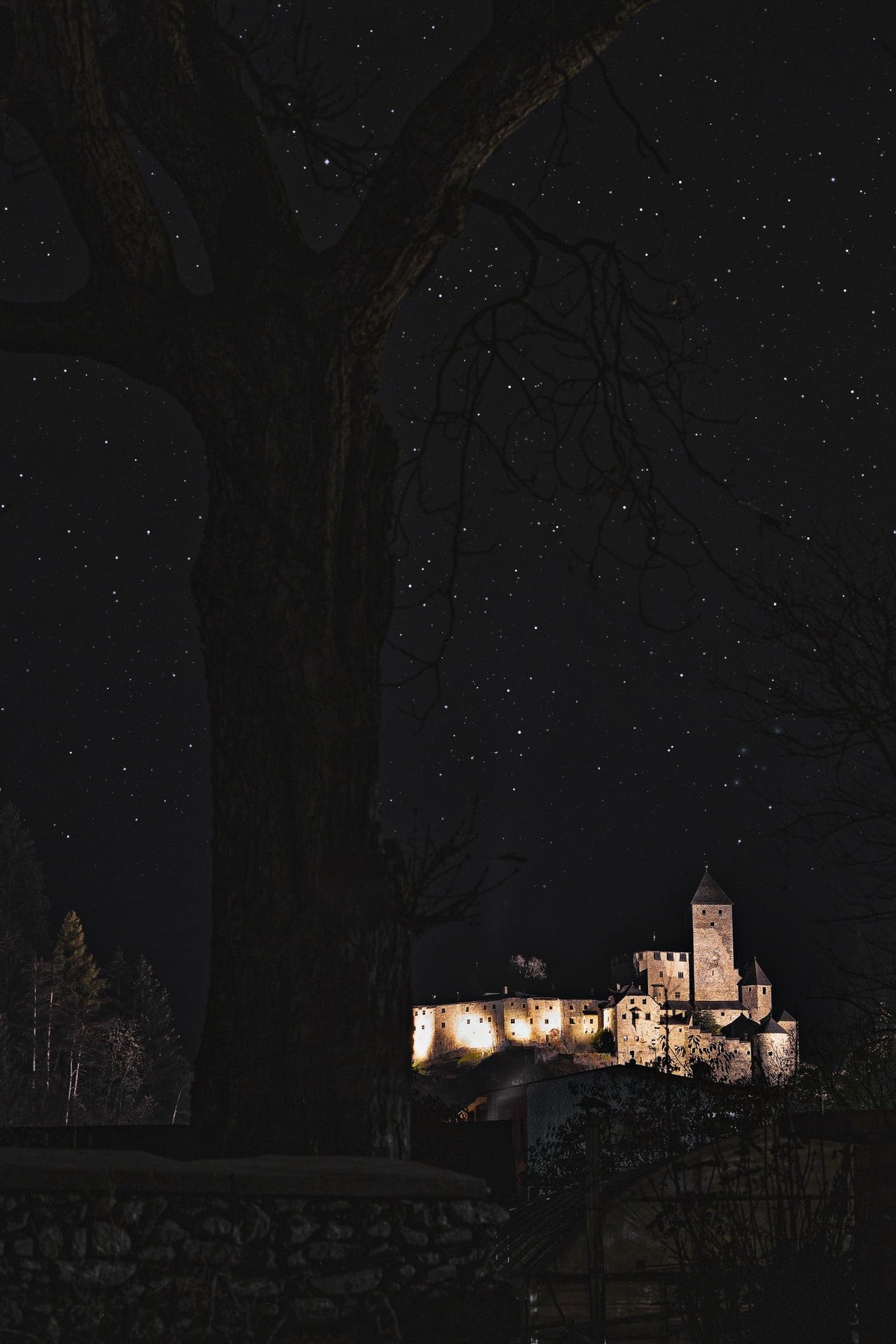 Beautiful wallpaper with castle and trees in the night 1280x1920