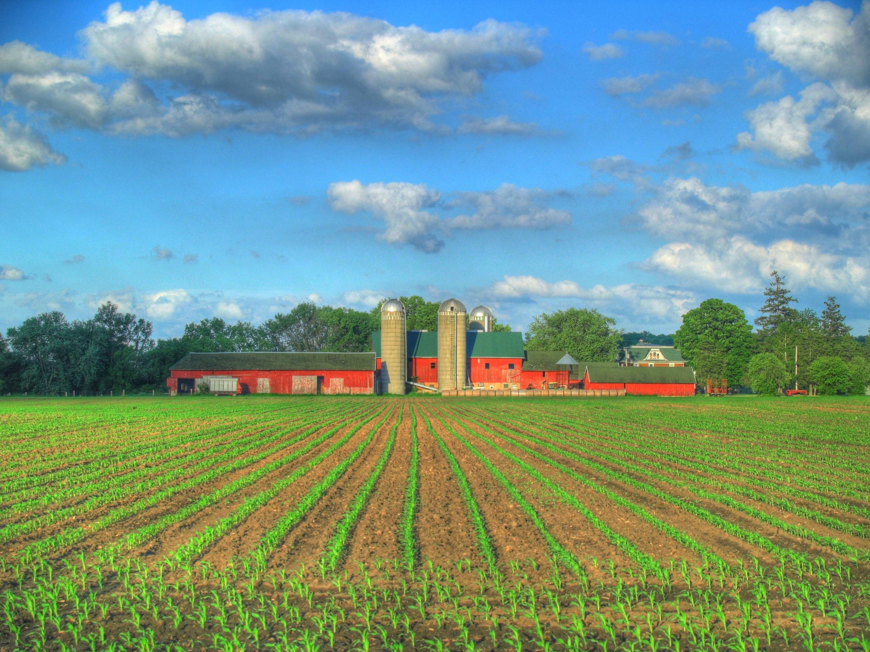 Farm Backgrounds Pictures 3000x2249