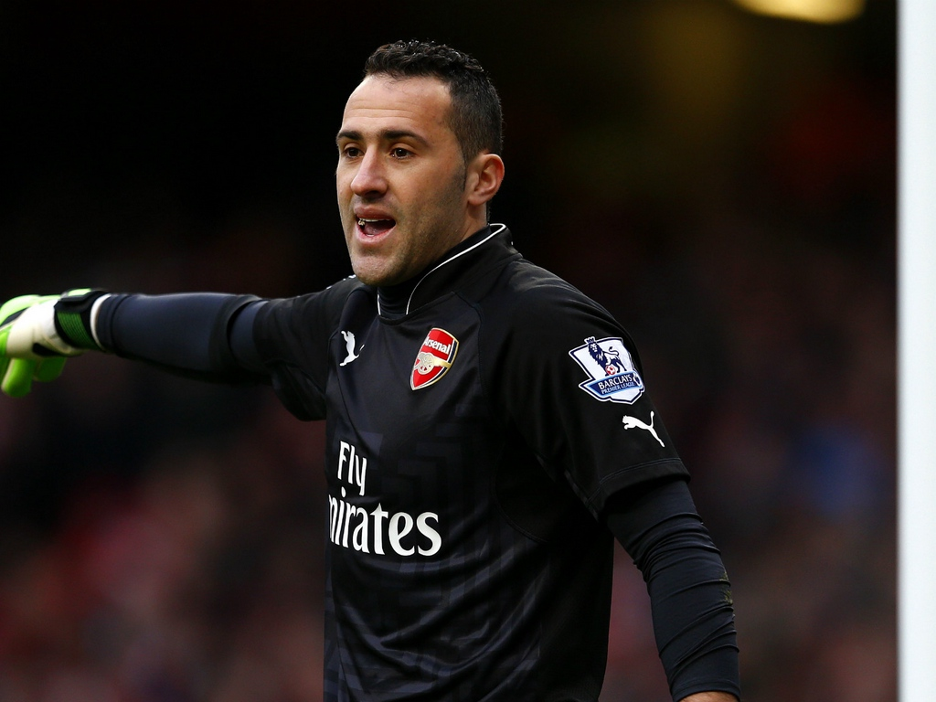 Download wallpaper 1024x768 david ospina arsenal footballer 1024x768