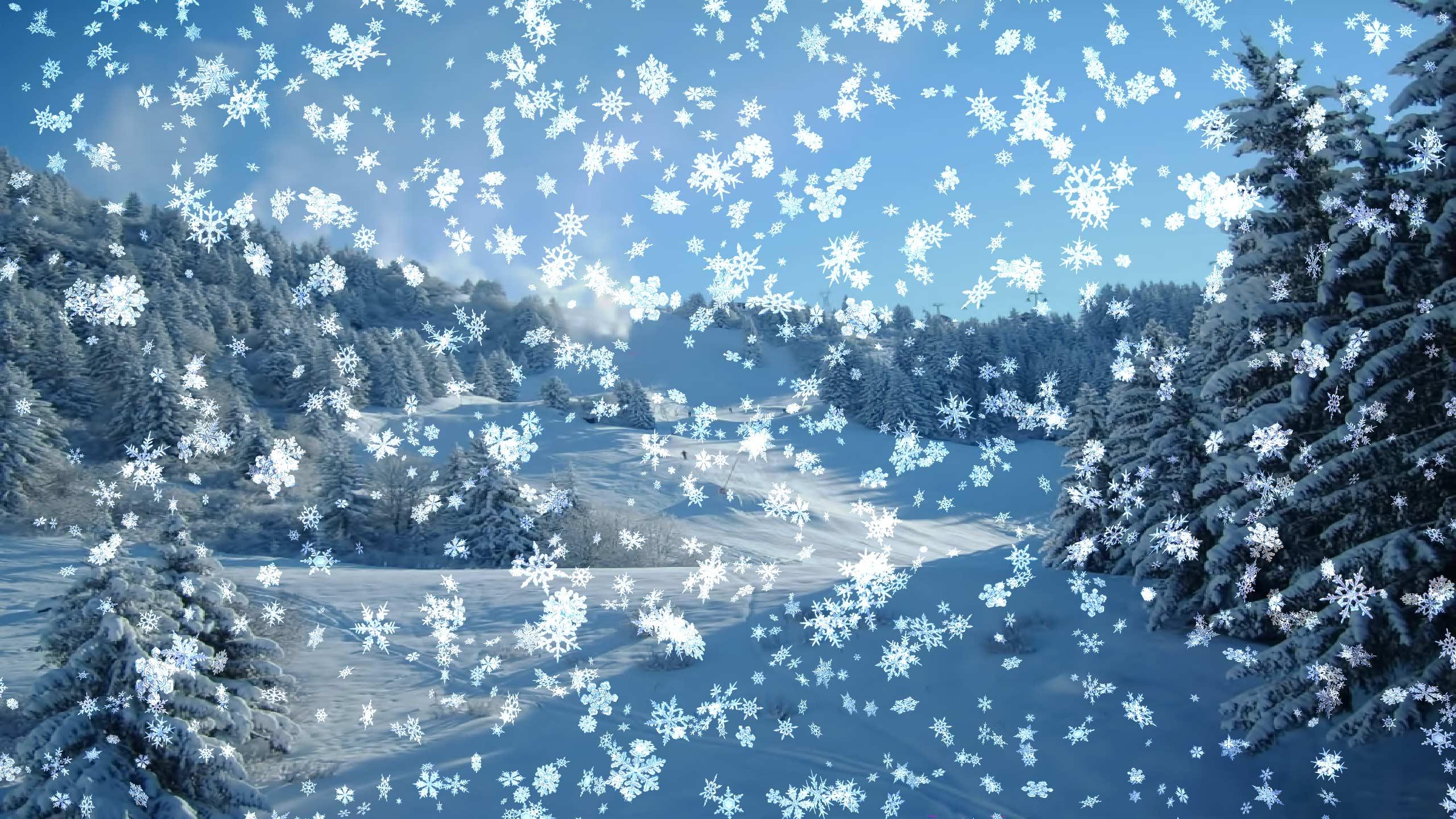 Новогодние картинки живые и еще падающий снег на картинках