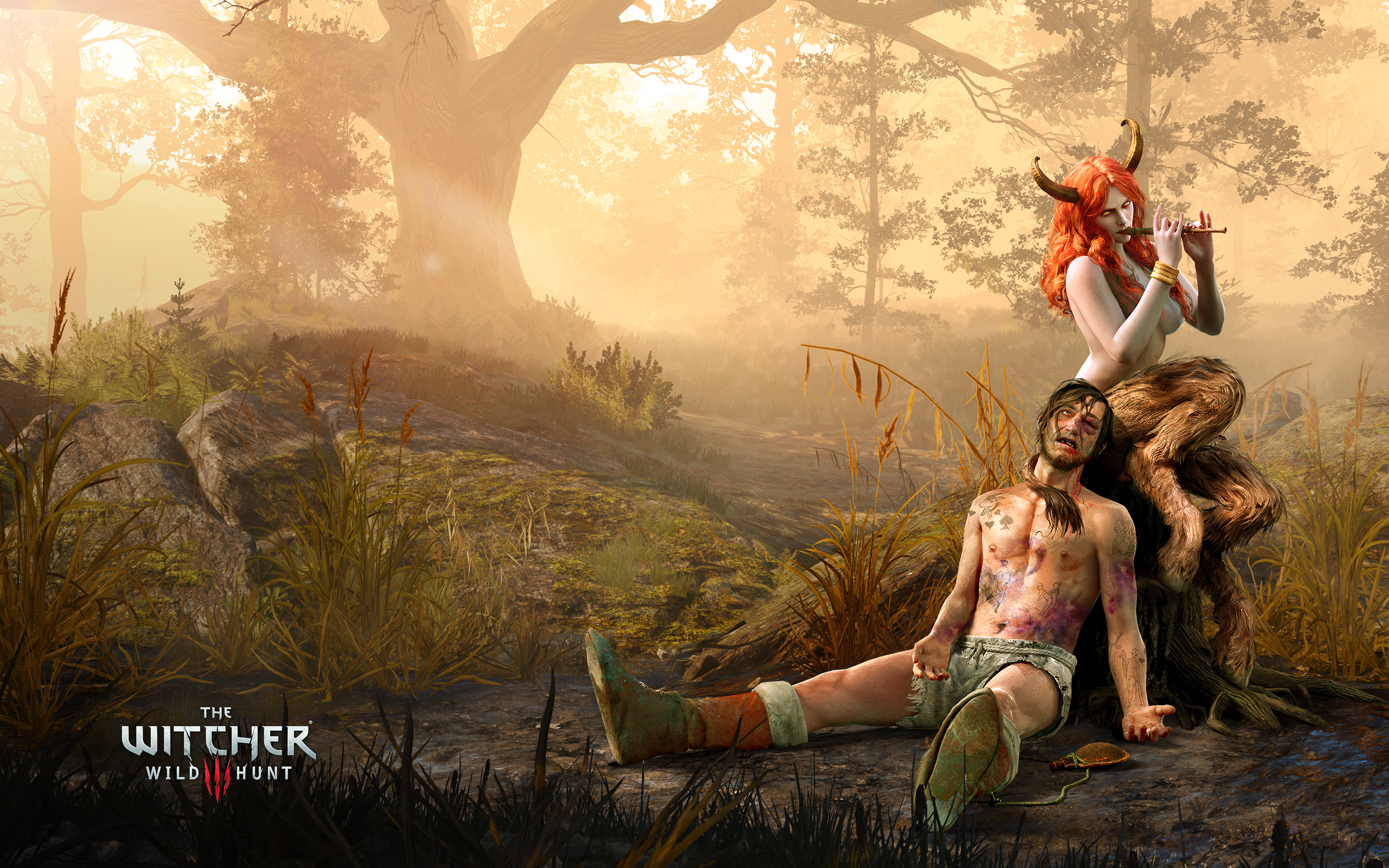 The Witcher 3 Wild Hunt The Succubus Wallpapers HD Wallpapers 2560x1600