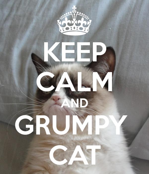 Grumpy Cat Iphone Wallpaper 600x700
