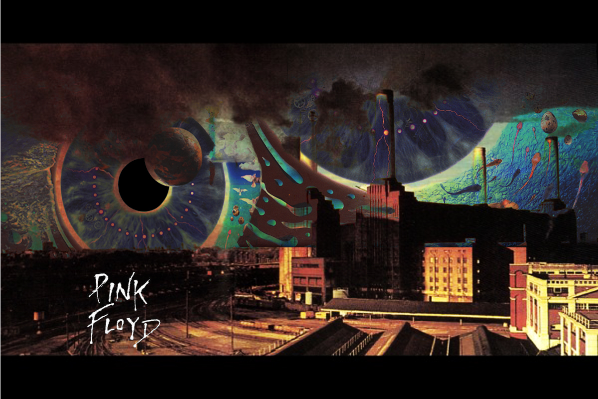 Animals Wallpaper Pink Floyd