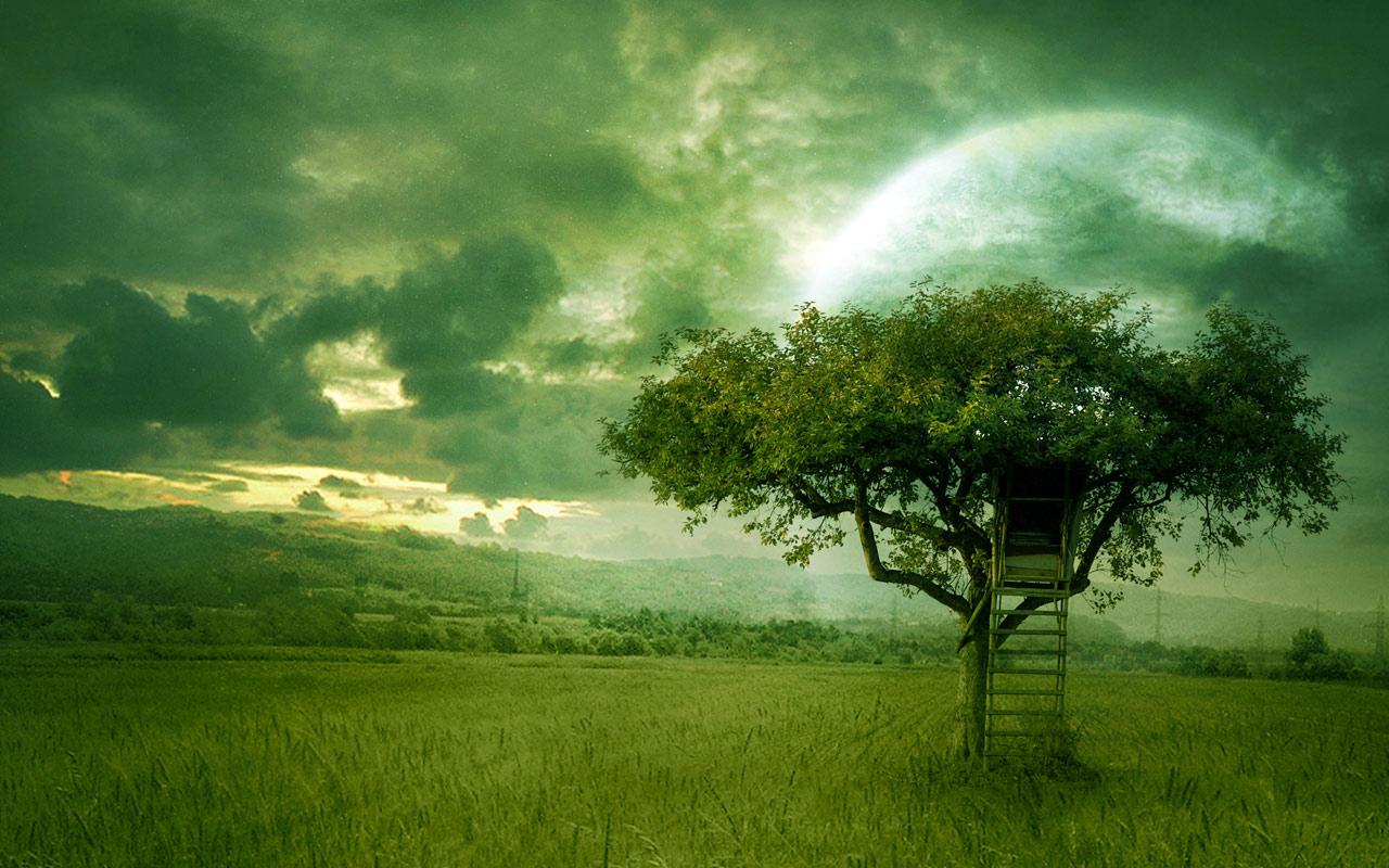 Green Wallpaper HD PosterArt HD 1 Zeromin0 1280x800