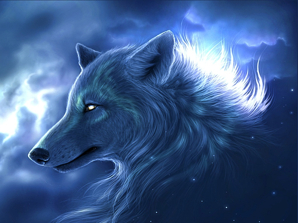 Cool Wolf Backgrounds 11033 Hd Wallpapers in Animals   Imagescicom 1024x768