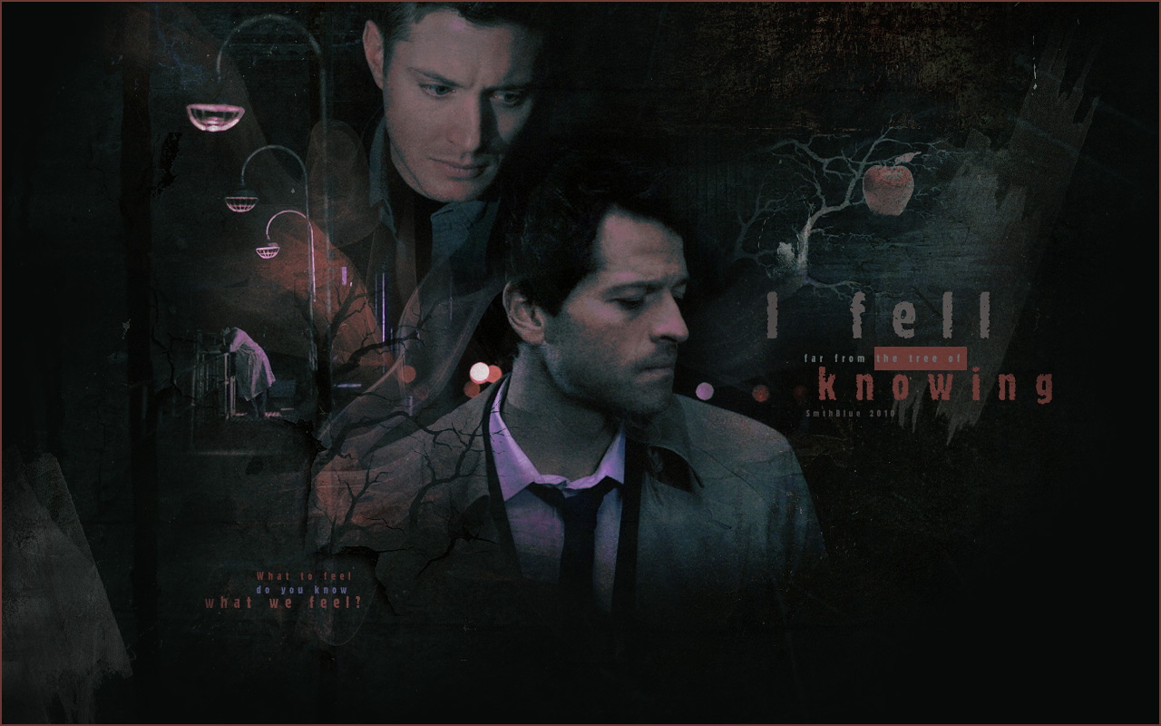 New Supernatural Wallpaper - WallpaperSafari