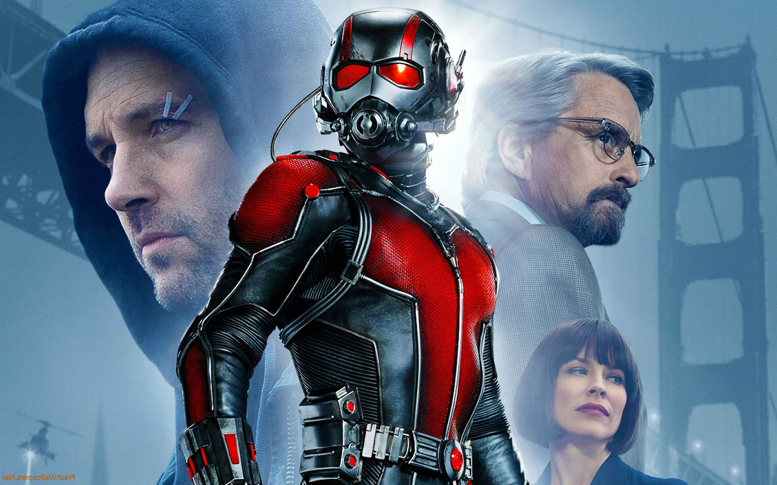 Ant Man Wallpaper Background HD 4197   HD Wallpapers Site 2560x1600