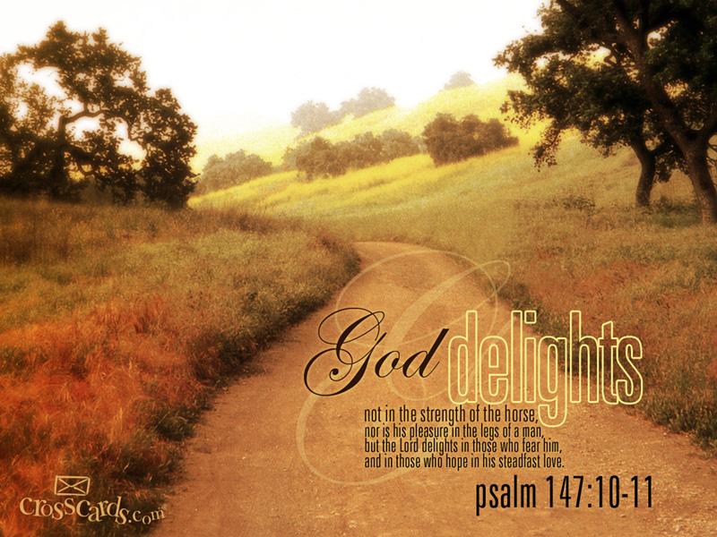 God Delights Desktop Wallpaper   Scripture Verses Backgrounds 800x600
