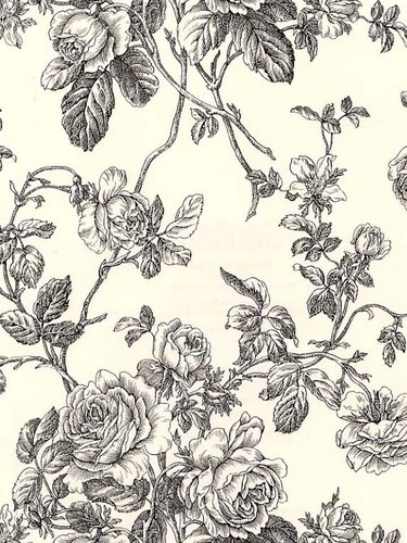 Black White Cream Toile Floral Vine Wallpaper Prepasted Vinyl Washable 375x500