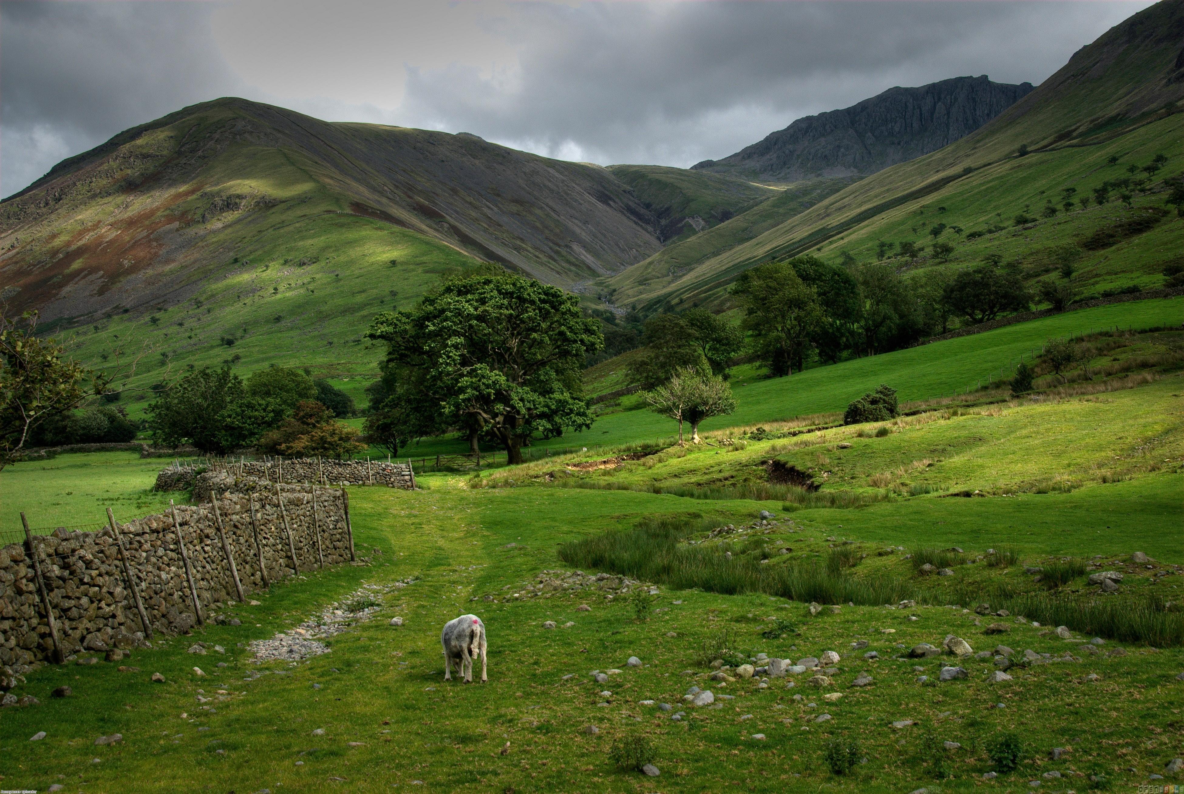 Green mountains scotland wallpaper 6895   Open Walls 3900x2616