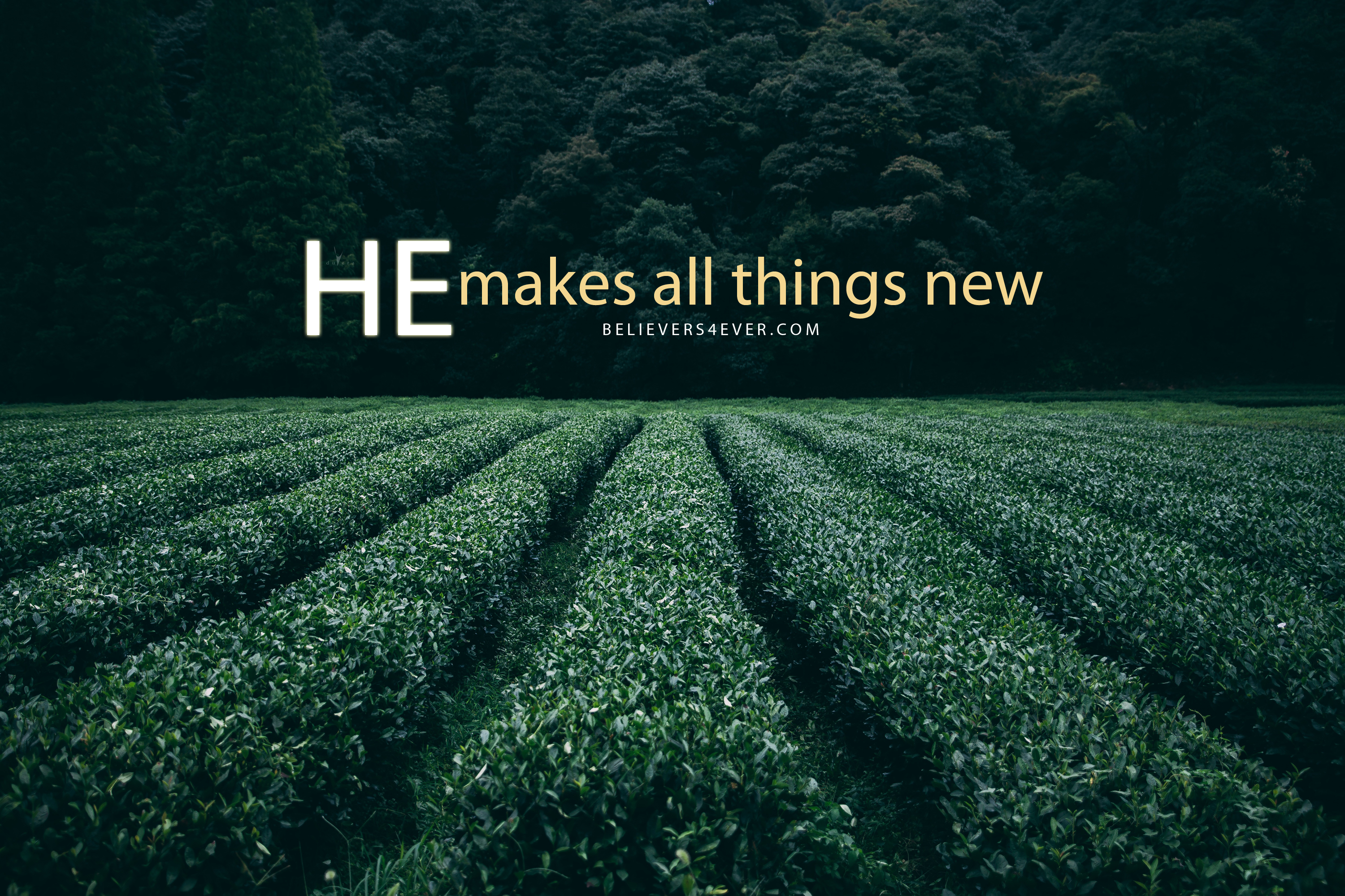 He makes all things new   Believers4evercom 3000x2000