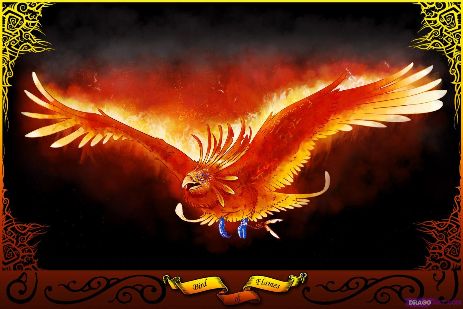 FULL WALLPAPER Phoenix bird wallpaper 1571x1047