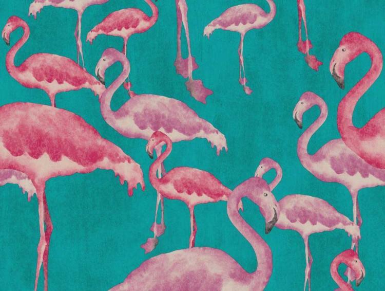 49 Flamingo Wallpaper Uk On Wallpapersafari