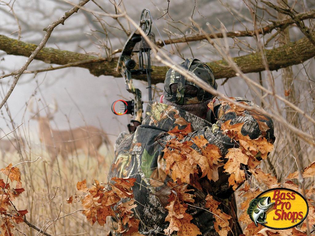 deer hunting desktop wallpaper wallpapersafari