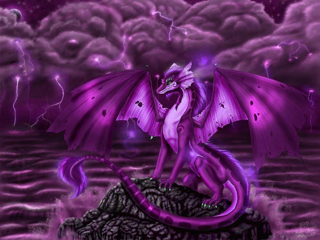 purple dragon wallpaper wallpapersafari