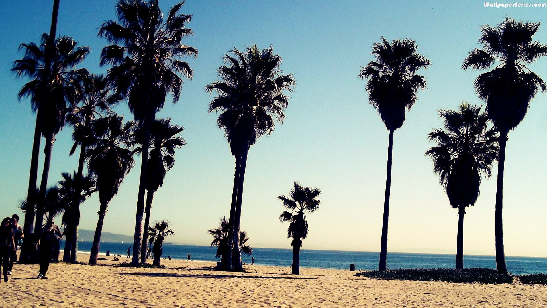 Venice Beach Wallpapers Wallpapersafari