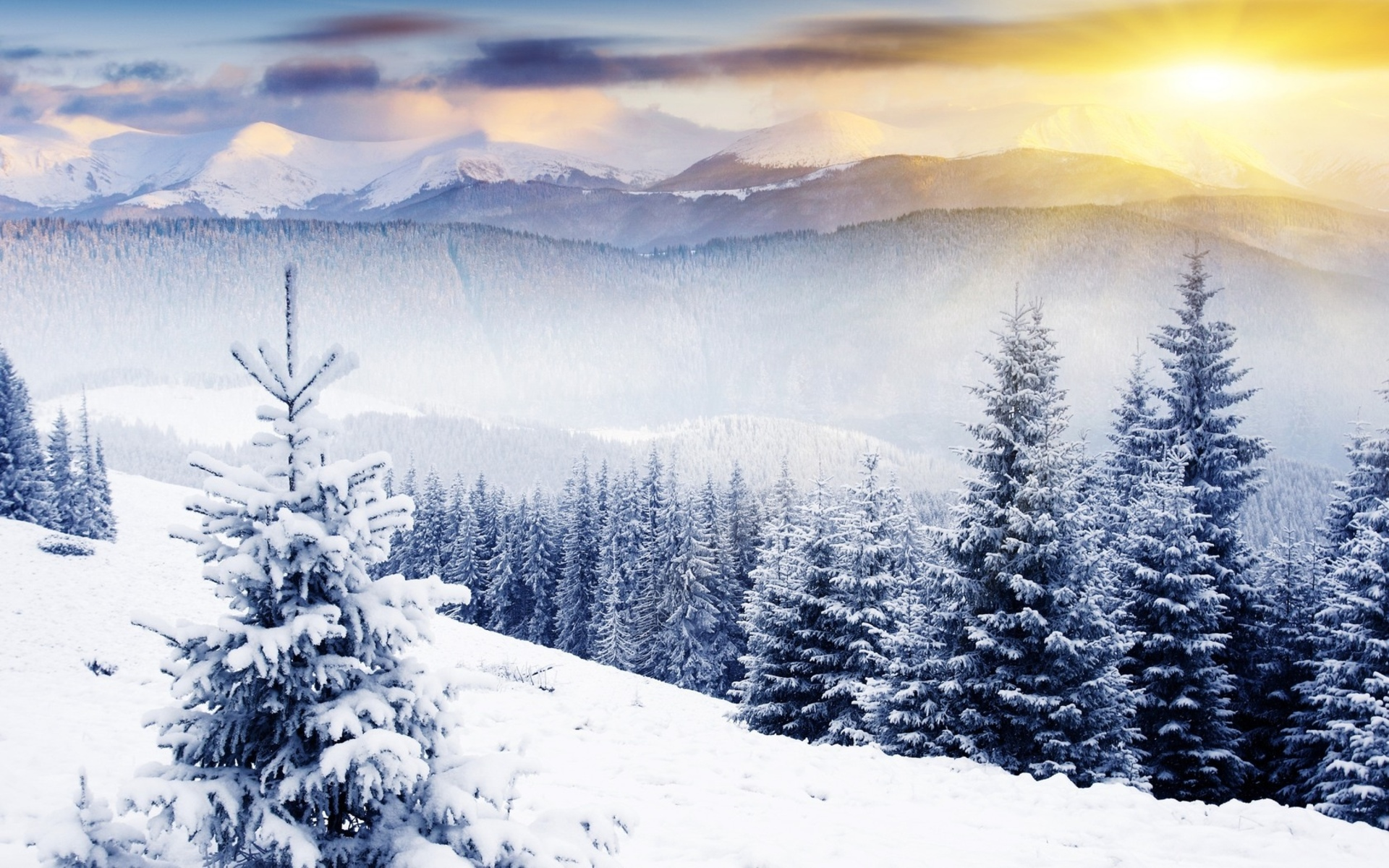 Winter Mountain Scenes Wallpaper   Viewing Gallery 1920x1200