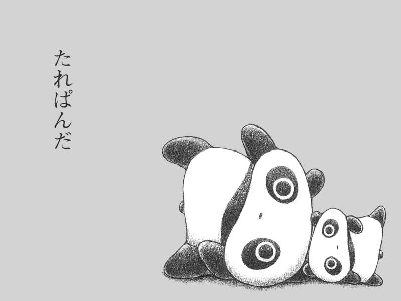 Anime Panda Wallpaper Images Pictures Becuo 800x600