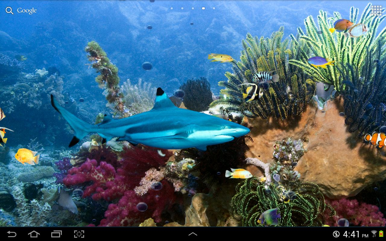 Tropical Fish Live Wallpaper   screenshot 1280x800