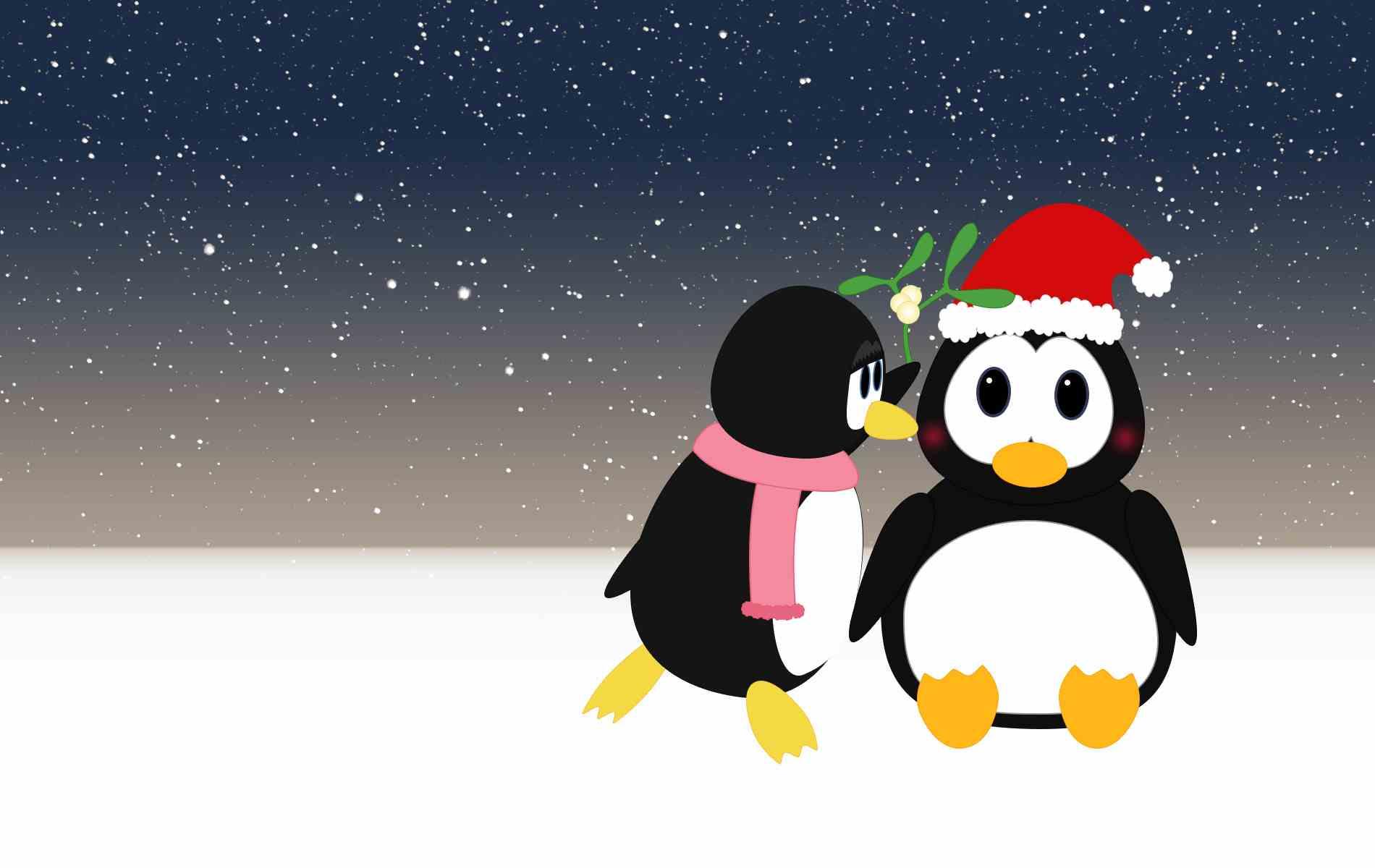 cute Penguin Love Wallpaper : cute Penguin Backgrounds - WallpaperSafari