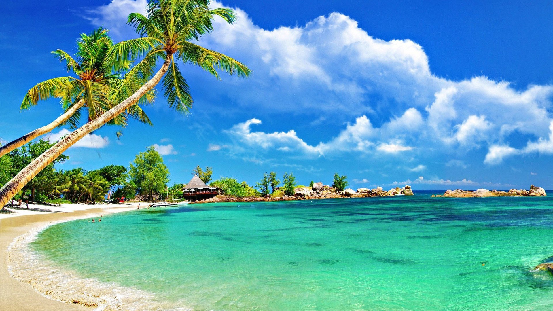 the beautiful seaside scenery - photo #35