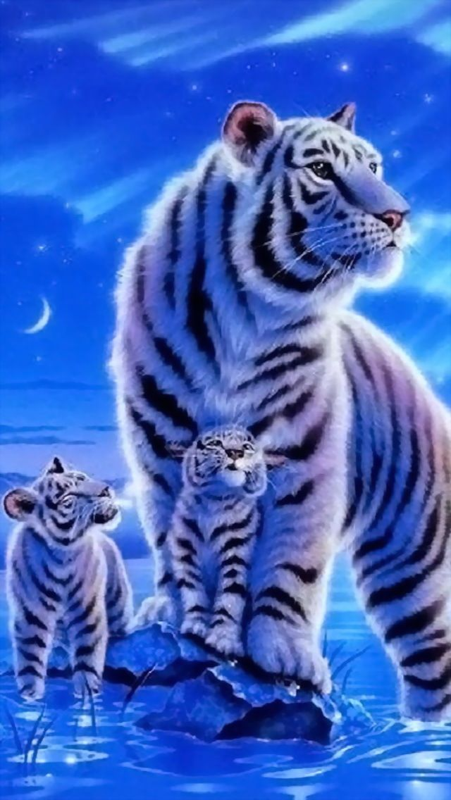 Image Result For Baby Tigers Picturesa