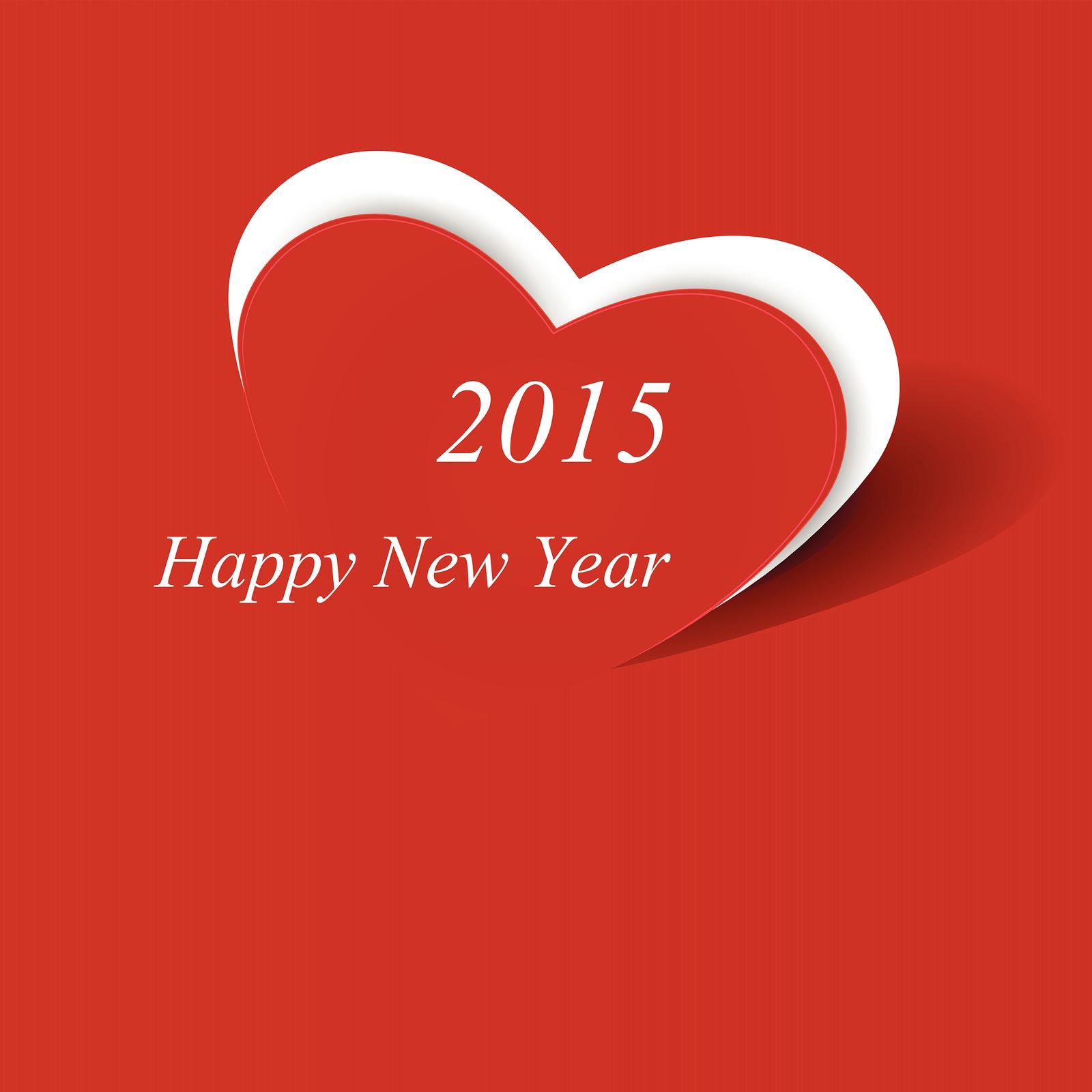 Happy New Year 2015 Image Wallpaper 7901 Wallpaper computer best 1600x1600