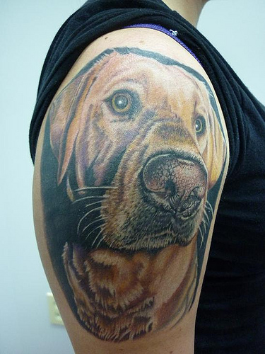 yellow lab skinworx tattoo Flickr   Photo Sharing 375x500
