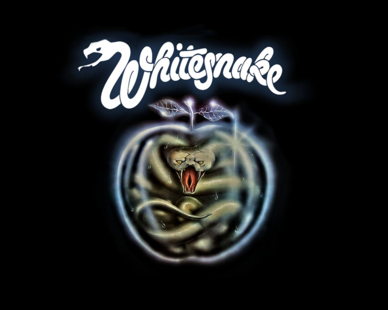 Whitesnake Wallpaper - WallpaperSafari