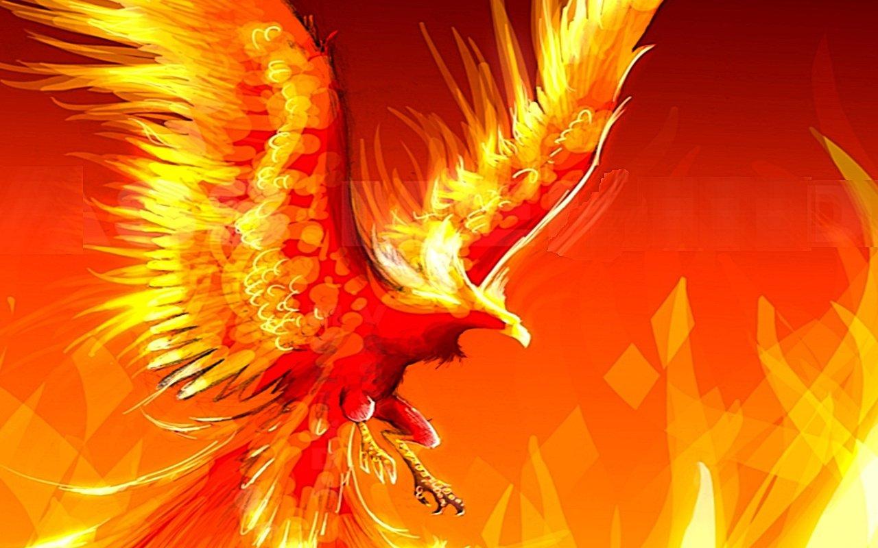 Fantasy Phoenix Wallpaper 8 Desktop Wallpaper Wallpaper 1280x800