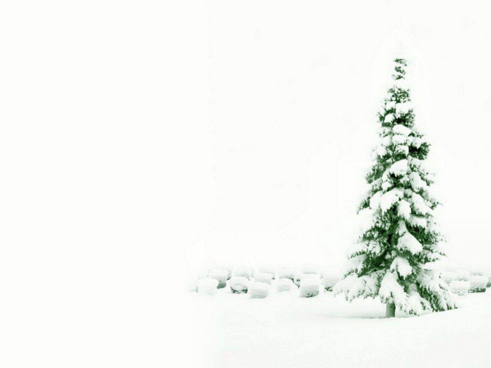 Christmas Holiday Backgrounds 1600x1200