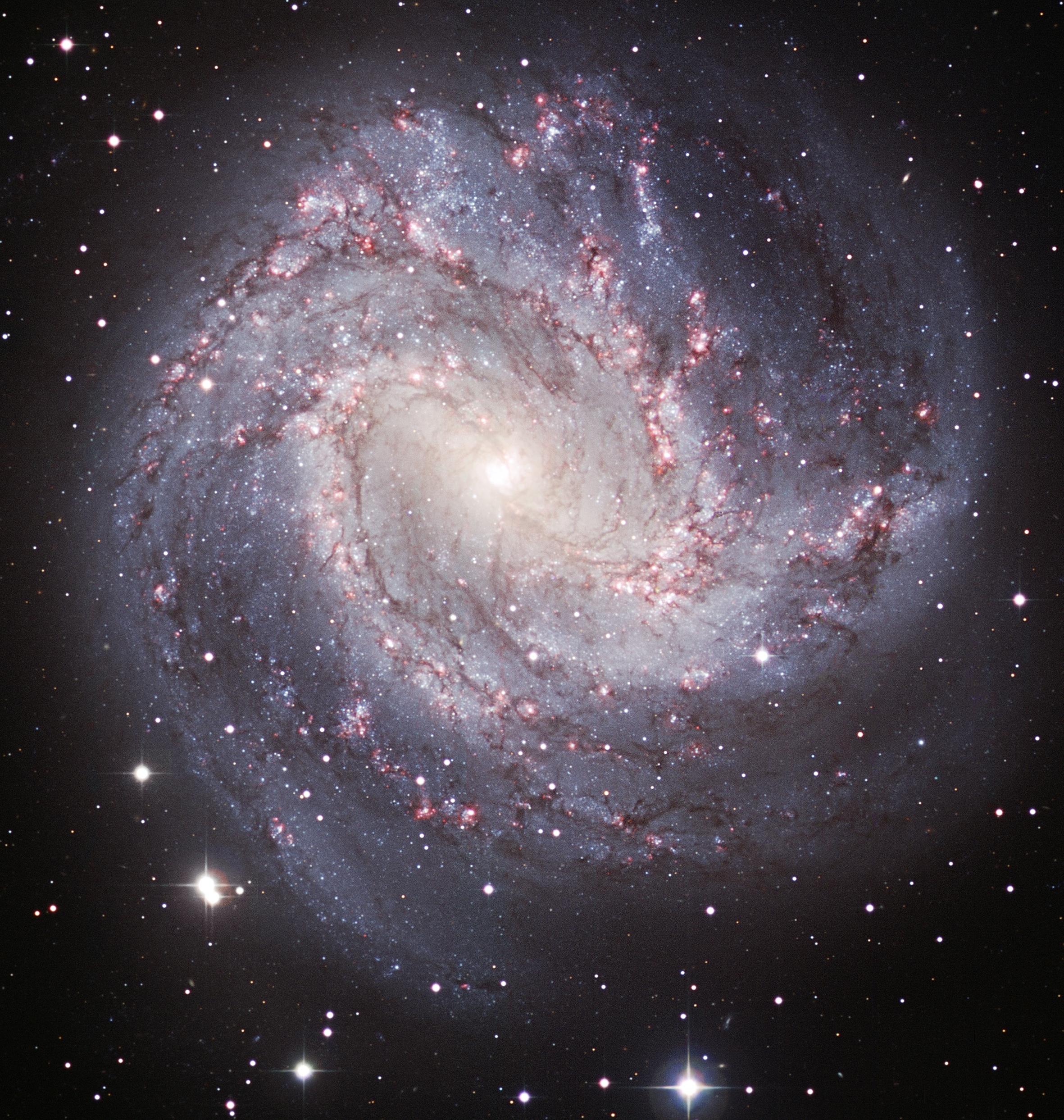 Messier Monday The Southern Pinwheel Galaxy M83 Starts 2362x2486