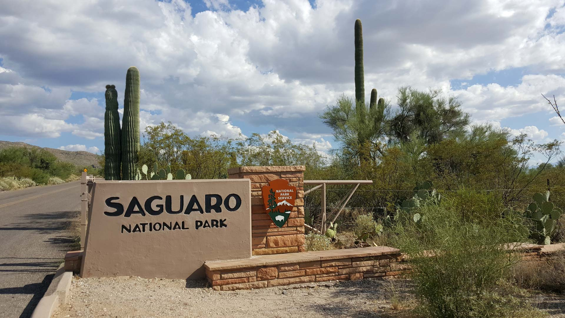 Volunteers Keep Saguaro National Park Clean During Shutdown   AZPM 1920x1080