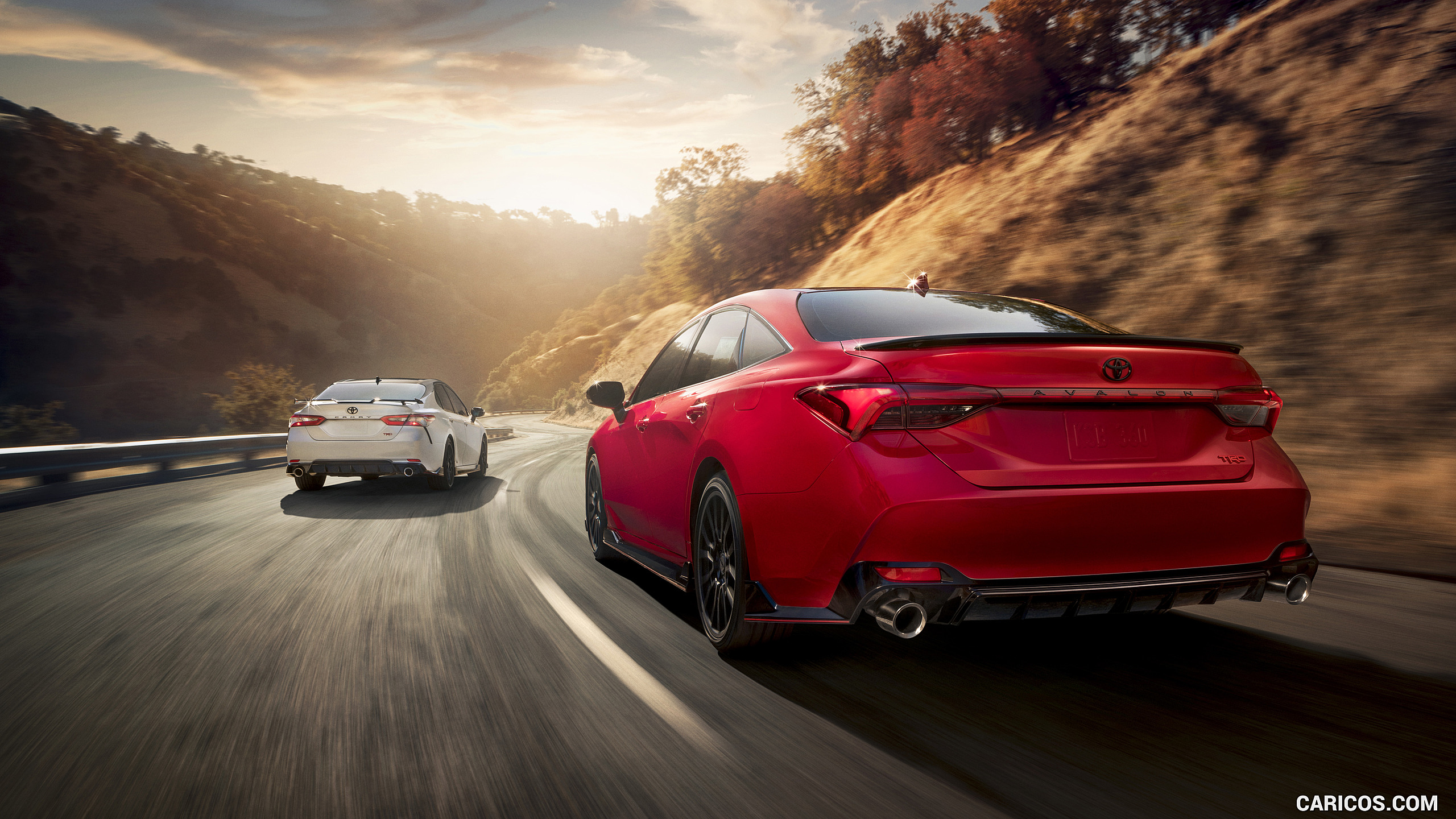 2020 Toyota Avalon TRD and Camry TRD HD Wallpaper 3 2560x1440