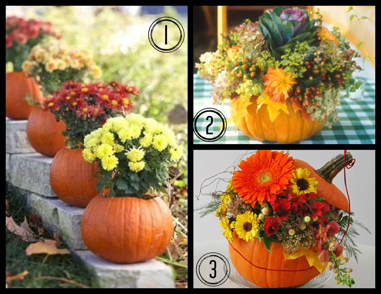 Fall Flowers And Pumpkins Fall flower pumpkin 1326x1024