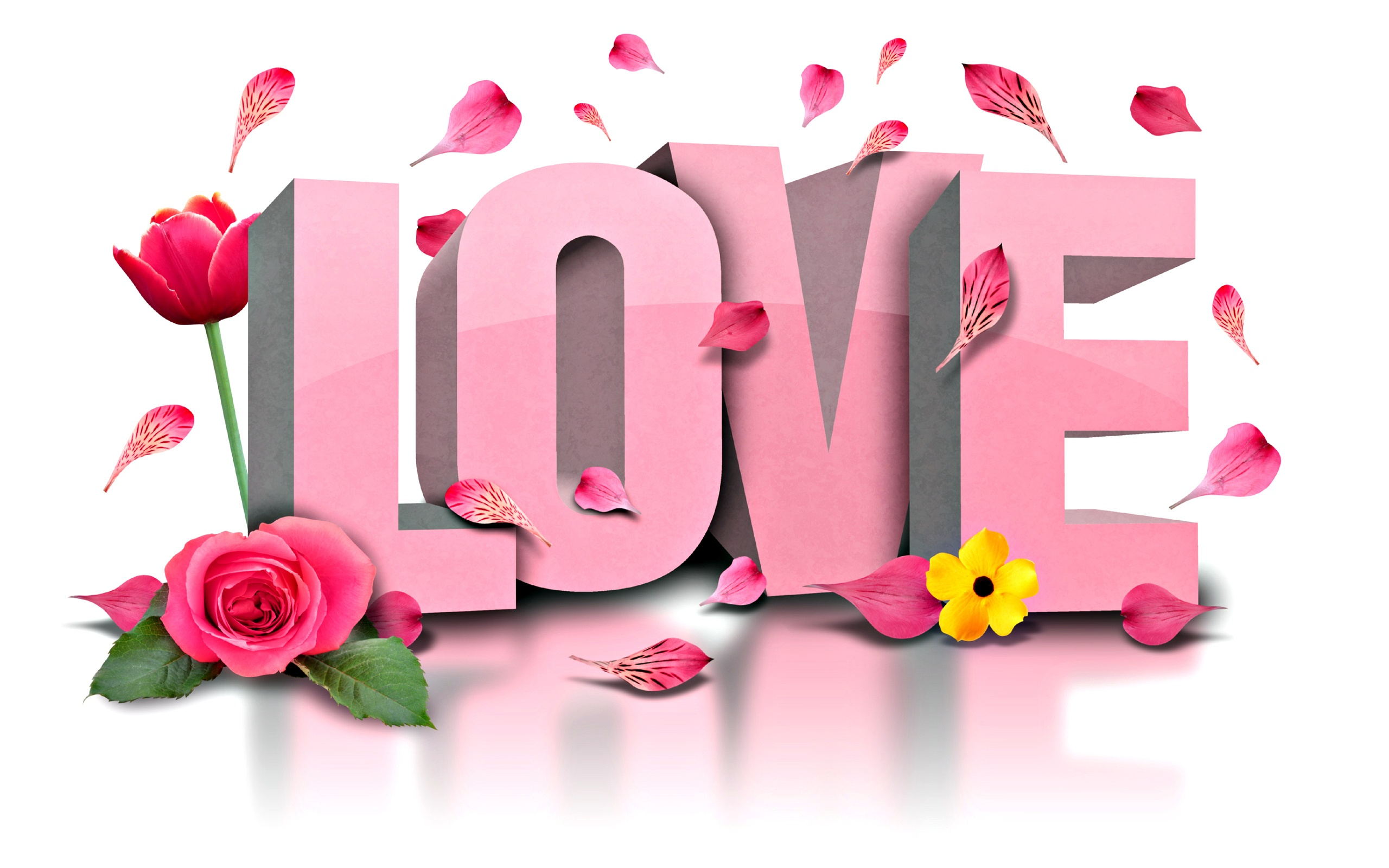 Love Flowers Wallpapers 2560x1600 577941