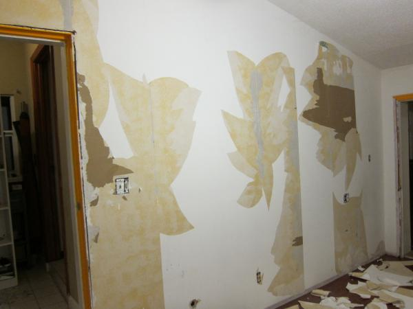 Removing layers of wallpaper   DoItYourselfcom Community Forums 600x450