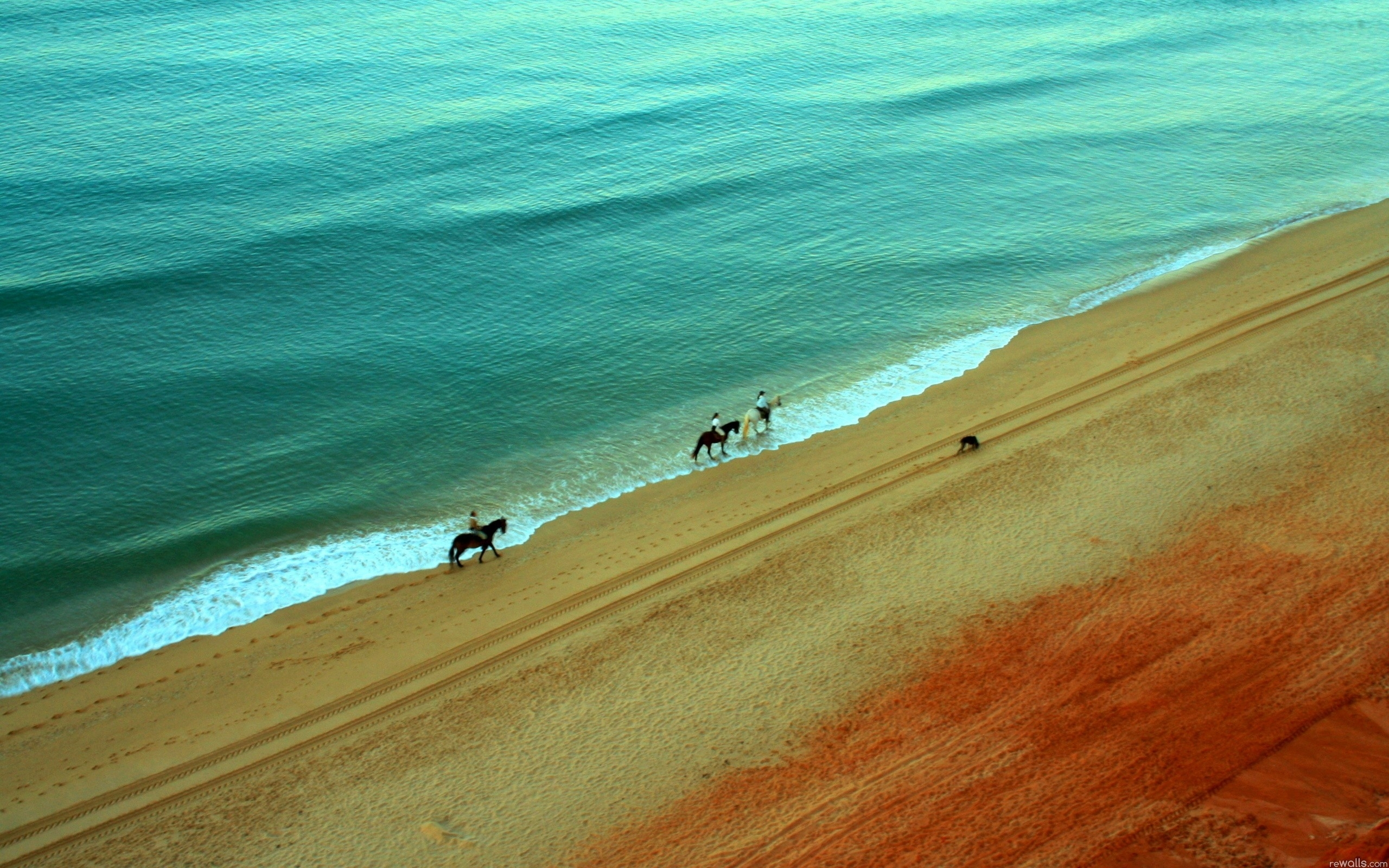 Ocean Beach Horses People wallpapers Ocean Beach Horses People 2560x1600