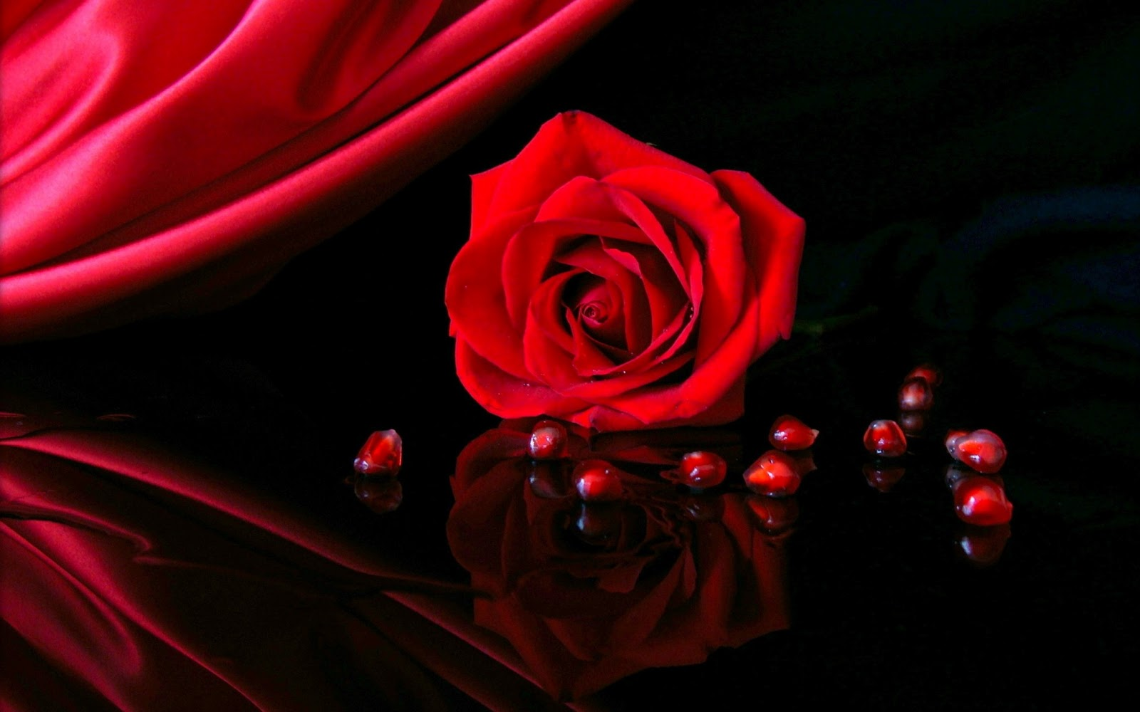 Cute Red Rose Love Wallpaper Hd Best Iphone Wallpapers