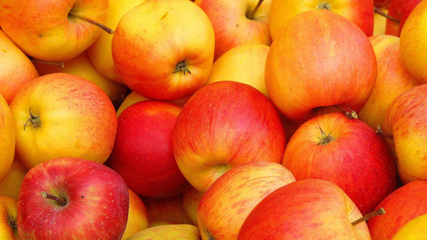 Our Apple Fruits Wallpaper World Wallpaper Collection 1366x768