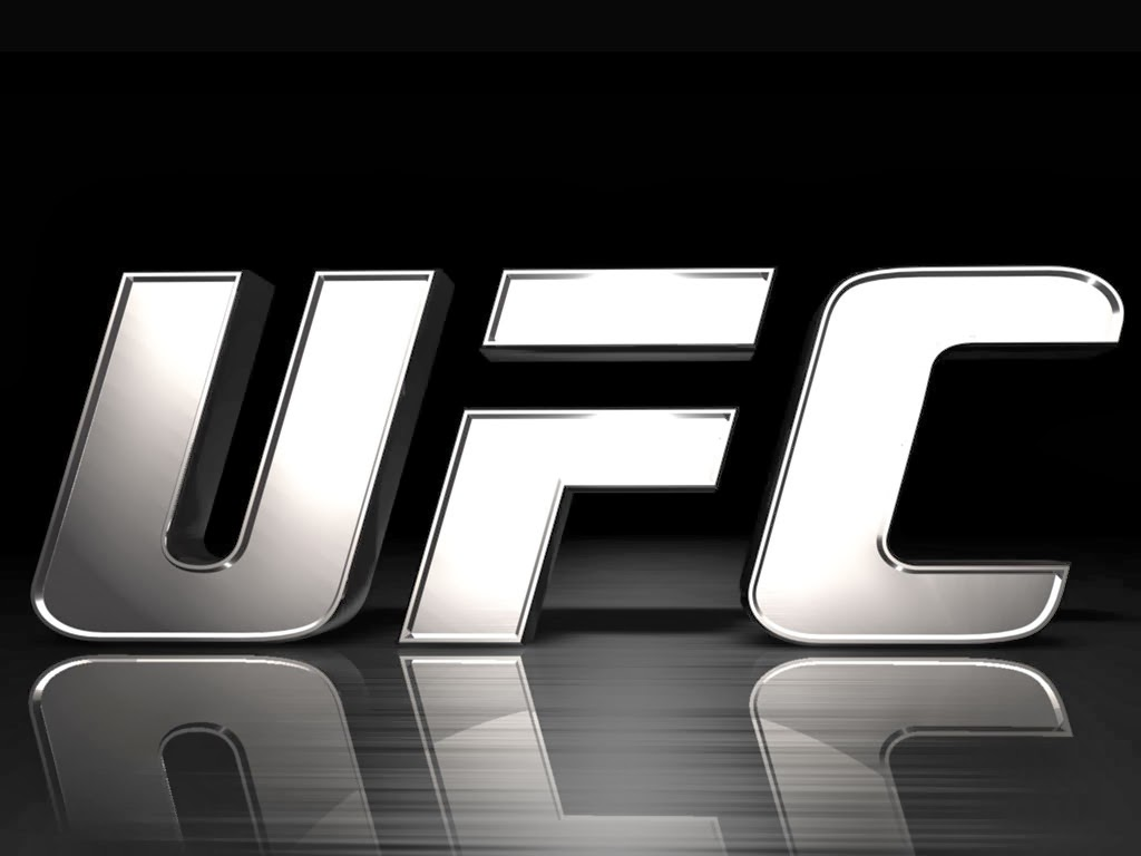 UFC Wallpaper 6jpg 1024x768
