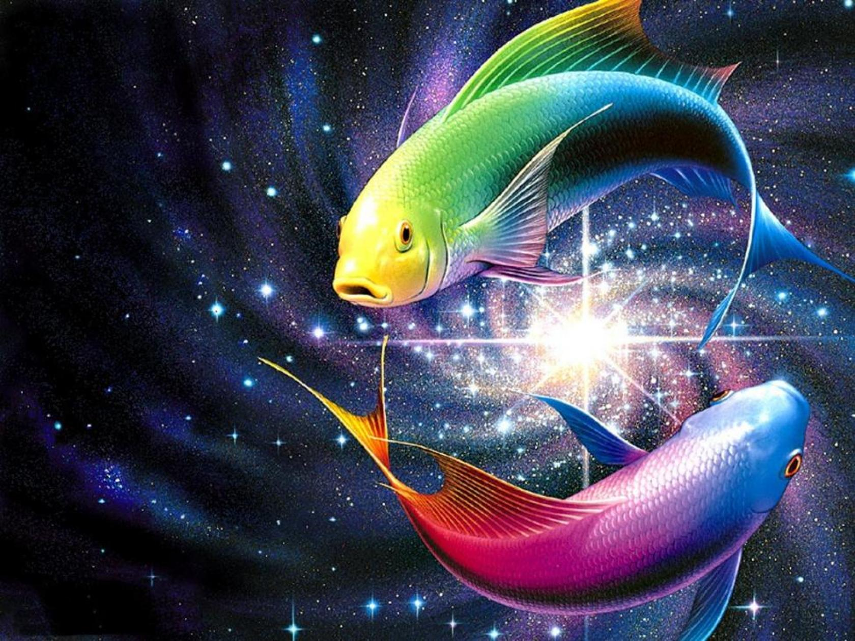 Rainbow Fish Wallpapers HD 10689 Wallpaper Cool Walldiskpapercom 1680x1260