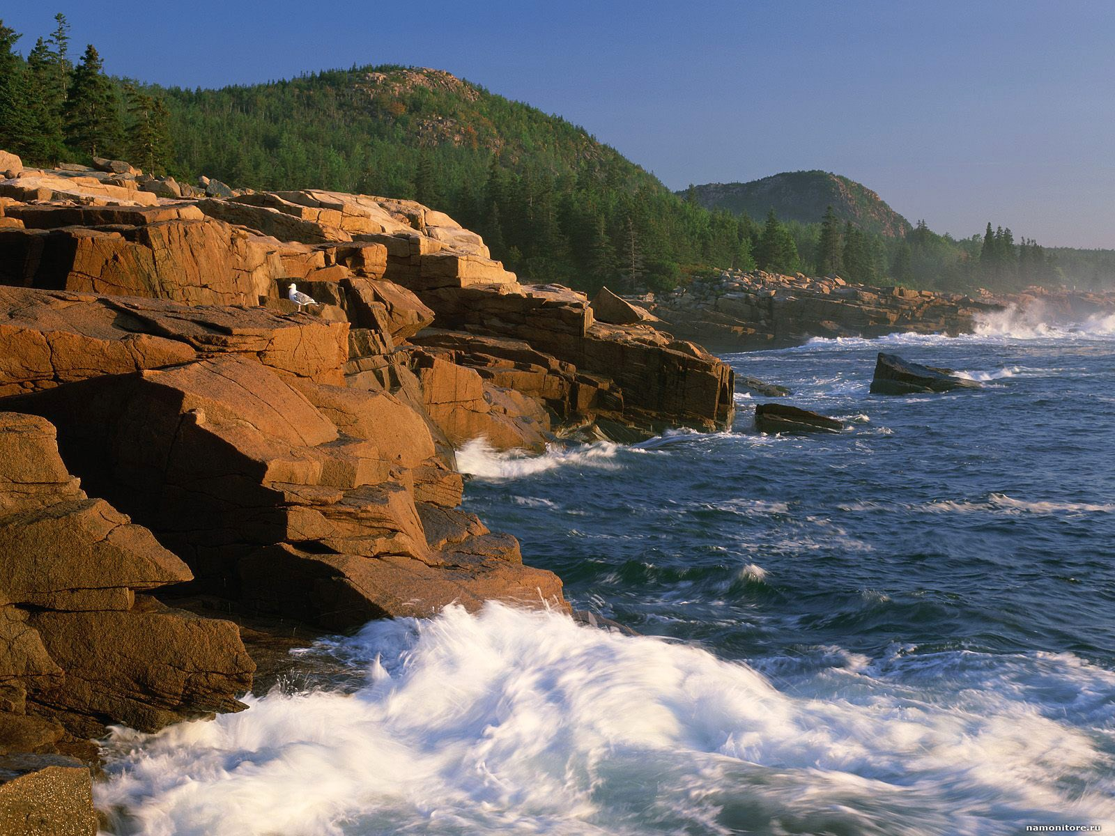 Mountain Beehive Acadia National Park nature 1600x1200   Wallpapers 1600x1200