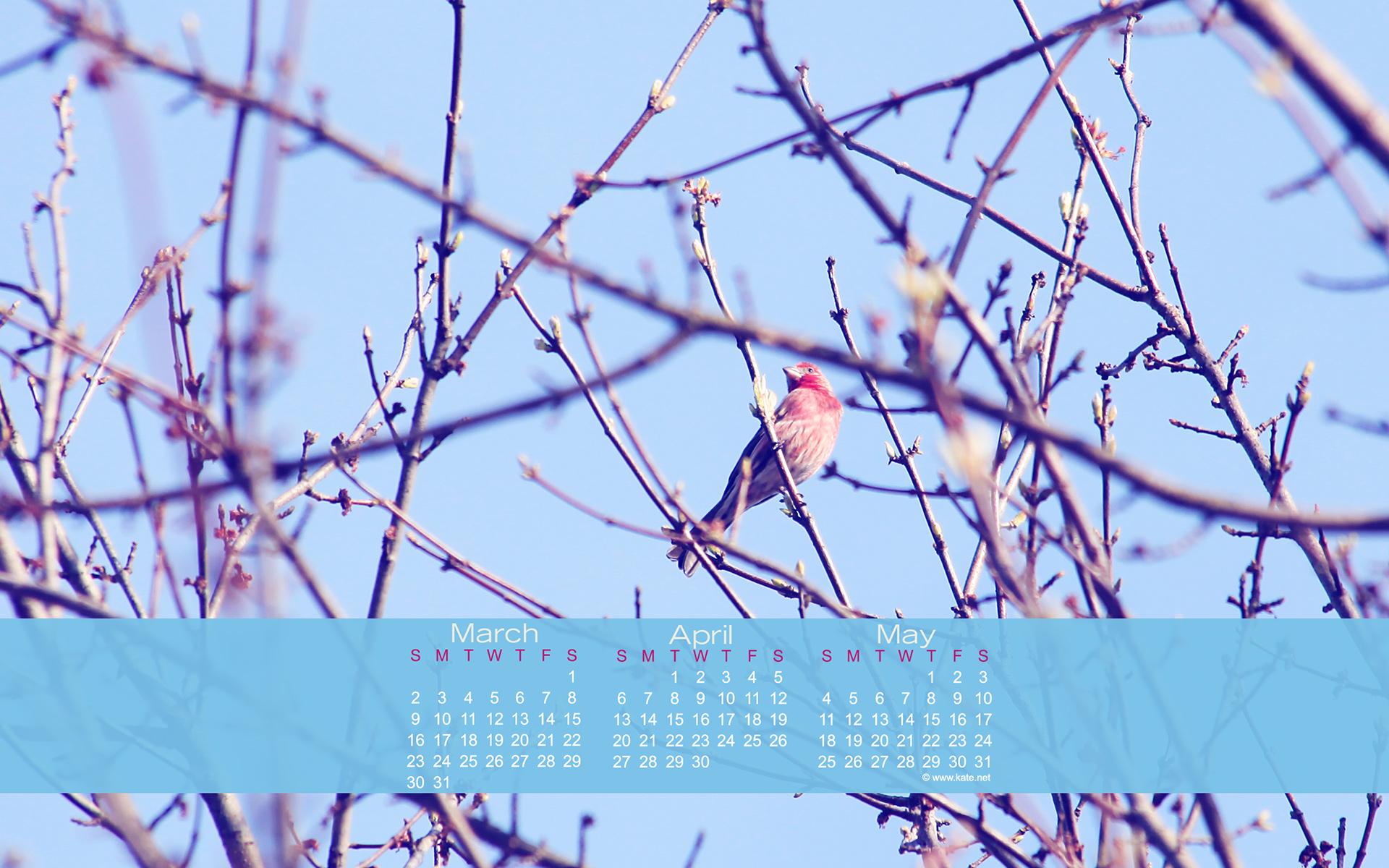 April 2014 Calendar Wallpaper 1920x1200