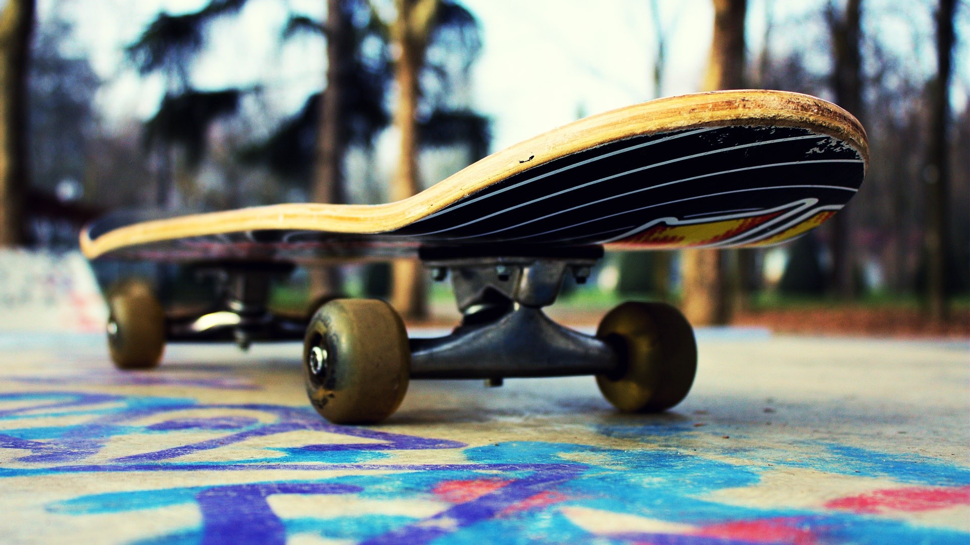 Skateboarding Wallpapers Related Keywords amp Suggestions 1920x1080